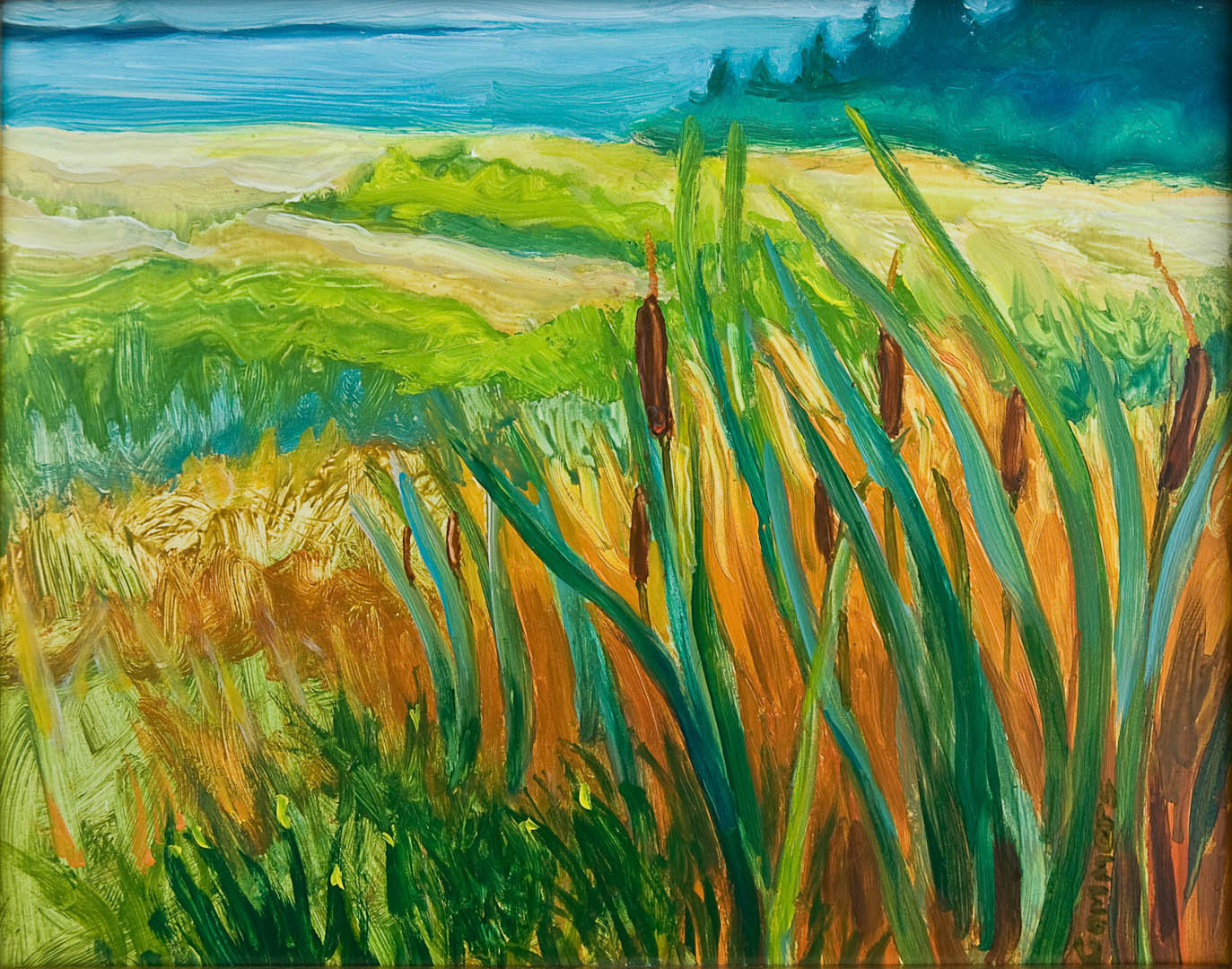 05 Cat Tails on Birch Point, Oil on board 8 x 10  (Sold)
